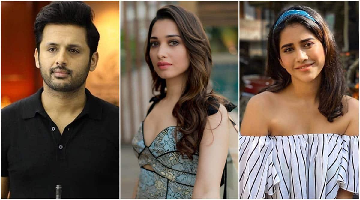 Andhadhun telugu remake cast