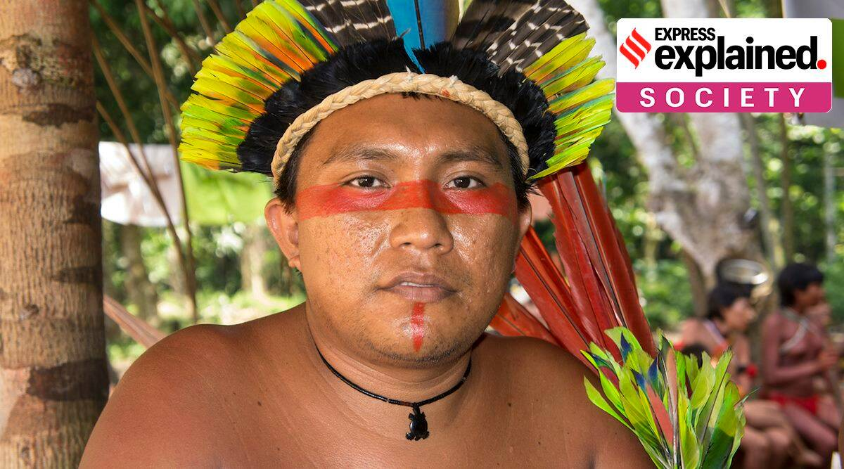 Blood Gold, What is Blood Gold, Yanomami people, Yanomami appeal to India on Blood Gold, Yanomami Blood Gold, Indian Express