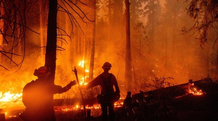 california wildfire, California fires, California, california wildfire news, wildfires in california, California heatwave, world news, World news