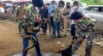 10-foot-long python causes traffic jam in Mumbai while crossing highway