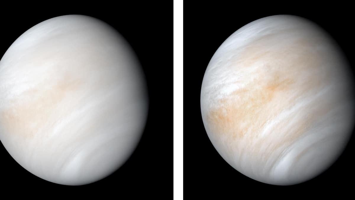 Venus, Venus planet, life on Venus, life on planet Venus, phosphene in Venus atmosphere, Tech news, Indian Express