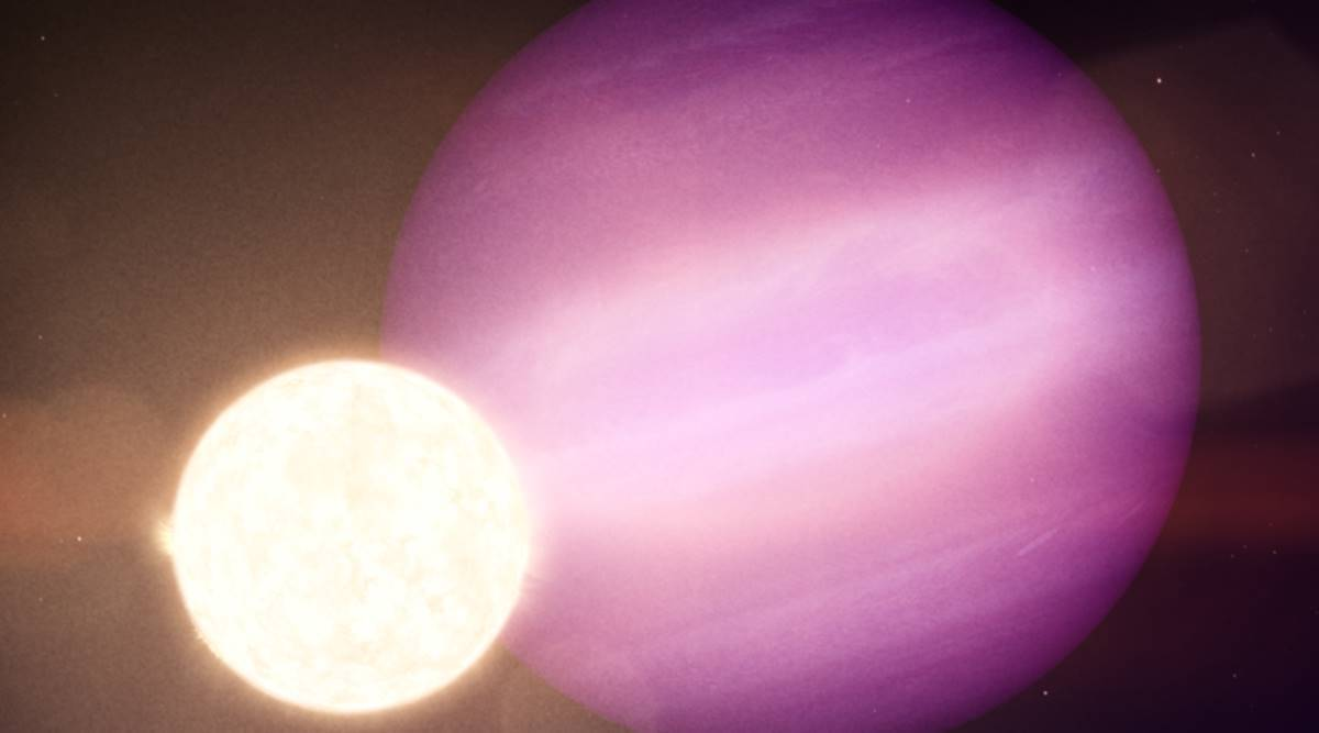exoplanet found, exoplanet jupiter size, exoplanet discovery WD1856 + 534b, exoplanet dwarf star, sun fate, sun future