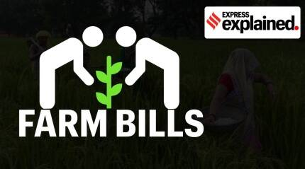 Quixplained: What are the farm bills, and why are farmers concerned?