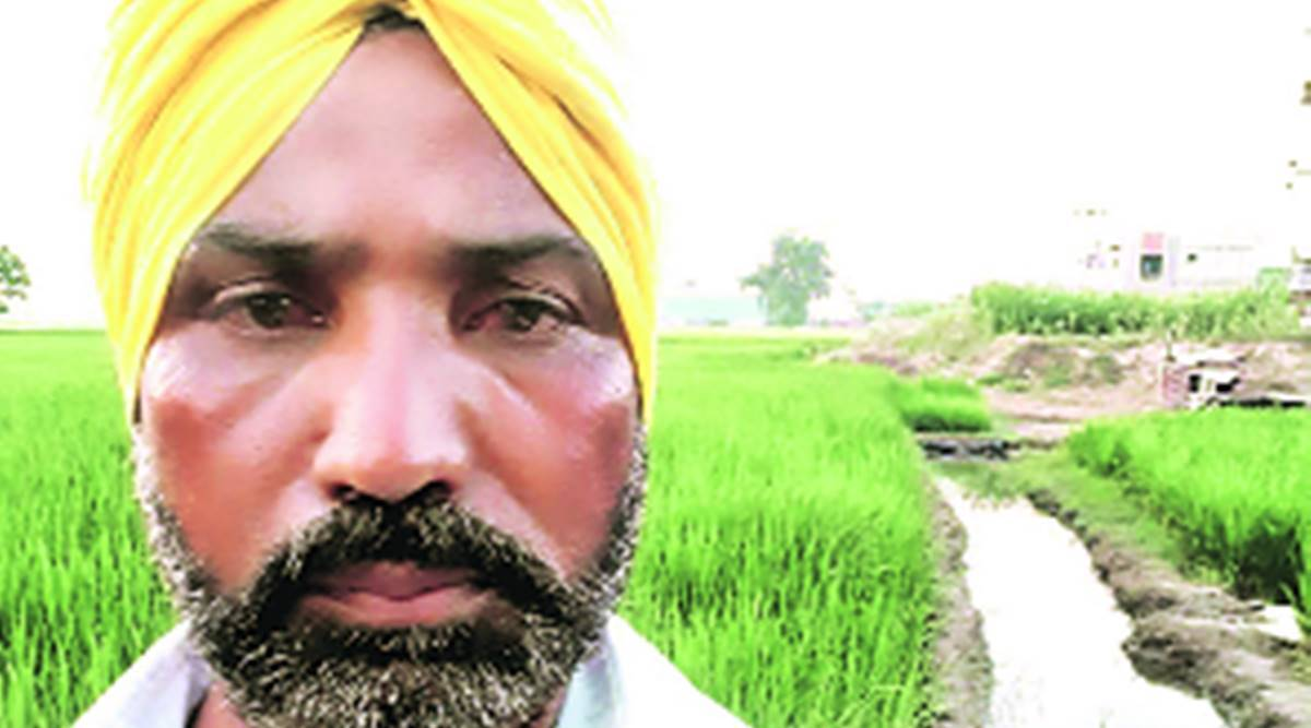 Punjab farmers, Marginal farmers protest, Farm bill, Private players, chandigarh news, Indian express