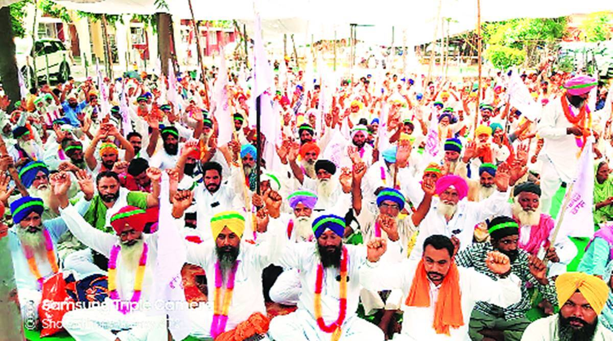 In Punjab, farm outfits firm on holding big dharnas, say Covid being used to silence protests
