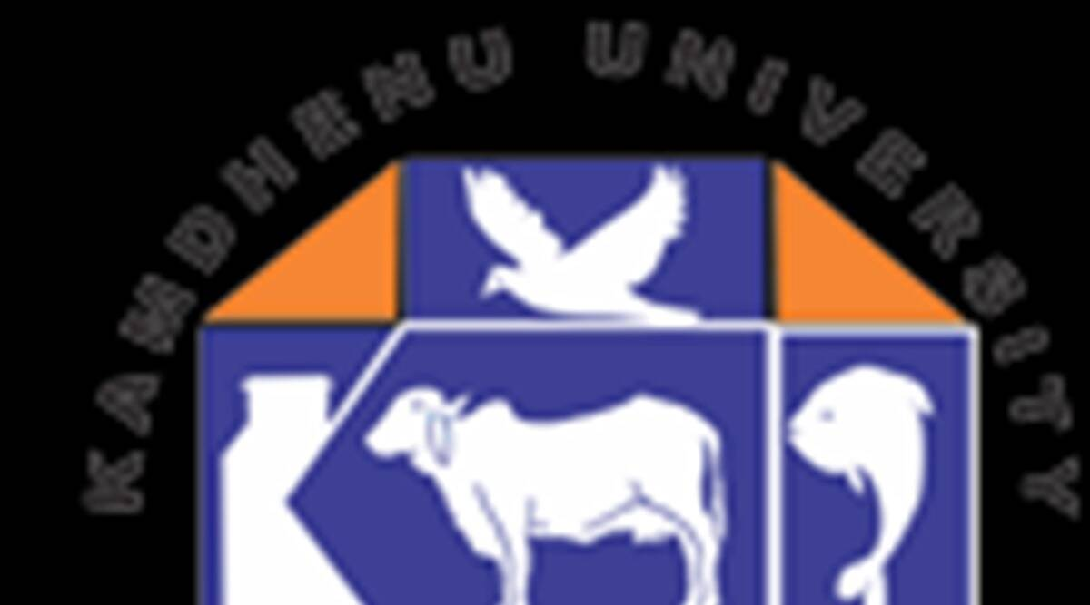 Gujarat: 11 colleges brought under Kamdhenu University