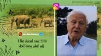 Sir David Attenborough joins Instagram, breaks record for fastest to reach a million followers