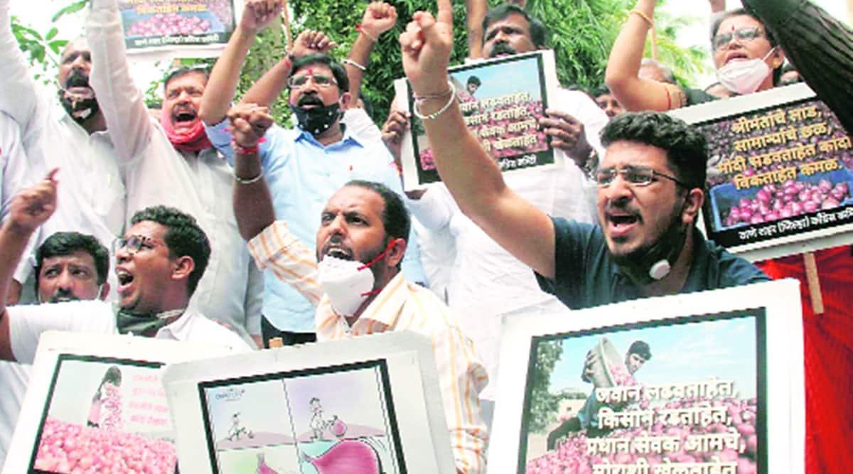 onion export ban, onion export ban protests, uddhav thackeray, devendra fadnavis, uddhav writes to centre over onion export ban, uddhav says lift onion export ban, indian express news
