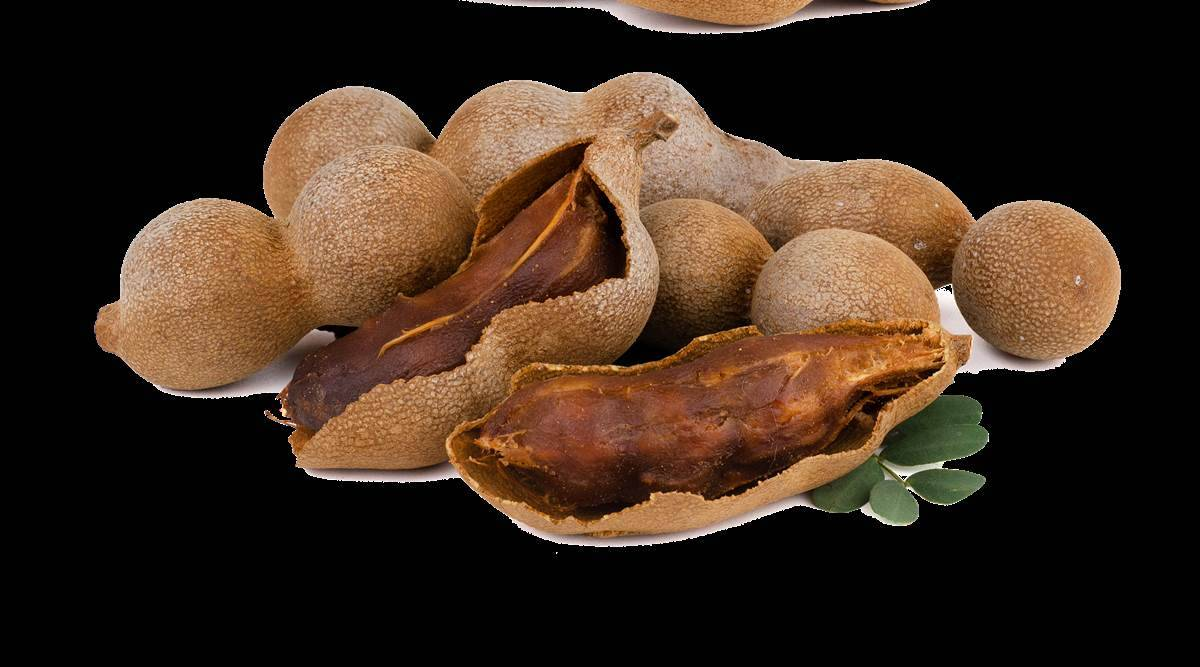 Here's why you should drink tamarind or imli juice