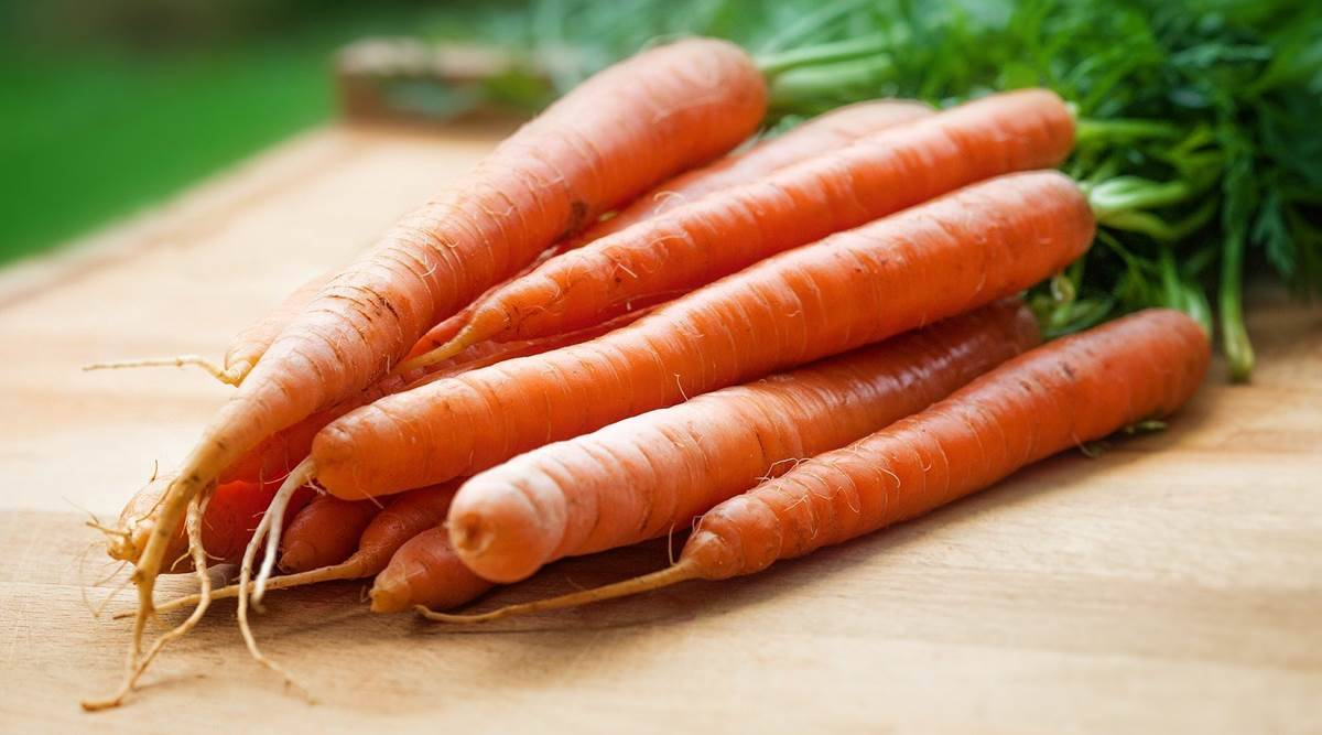 carrots for hair growth, hair care in lockdown, carrot oil for hair, carrot oil DIY, how to make carrot oil at home, hair care DIY, indian express news