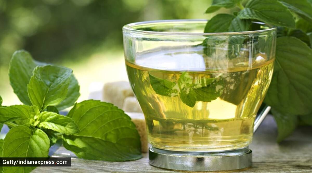 Immunity teas, know your tea, how much tea should one drink, drinking teas, difference between teas, is green tea good for immunity,