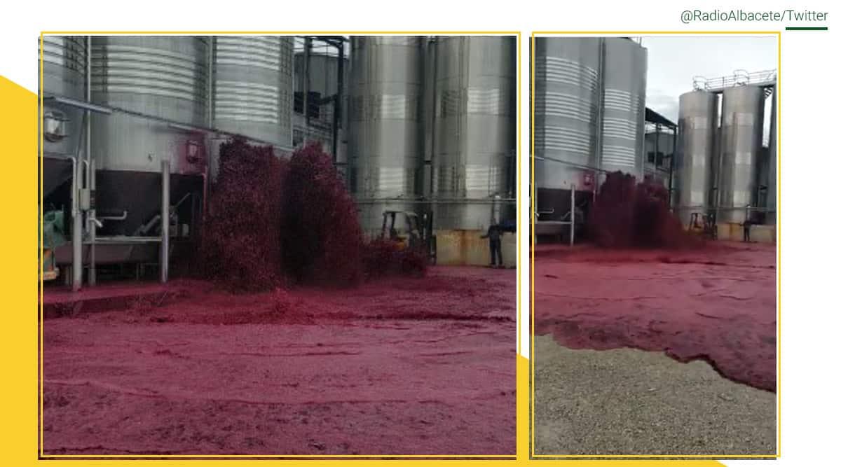 Spanish winery, Red wine flood, Bodegas winery leak, Red wine tank leak, Spanish winery malfunction, Viral video, Vallamalea wine flood, Trending news, Indian Express news