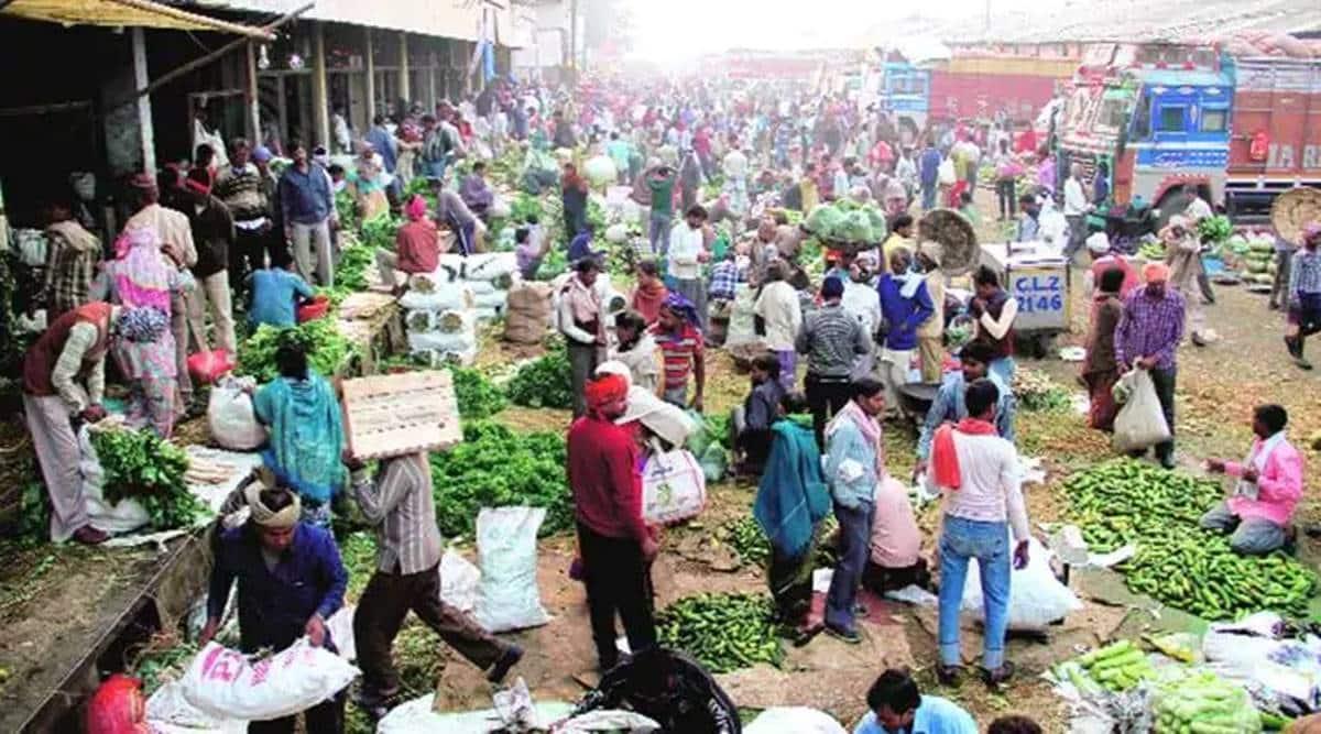new farm Acts, Farm bills, Mahuva APMC, Gujarat APMC, Ahmedabad news, Gujarat news, Indian express news
