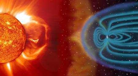Sun's magnetic field over five decades digitally mapped