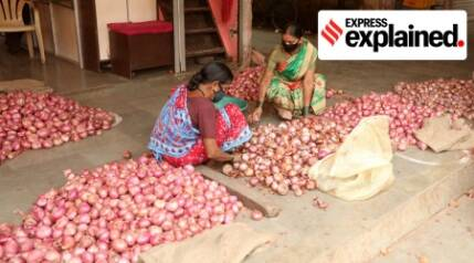 Explained: What determines onion prices