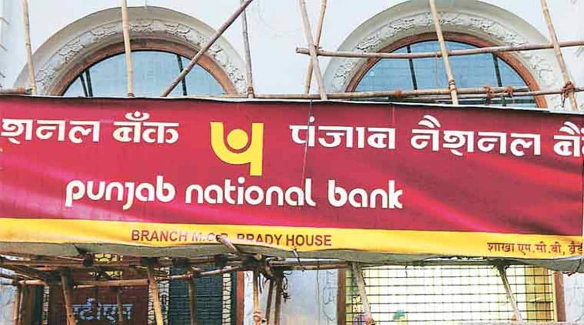 Ahmedabad Sintex fraud, Non-Performing Assets, NPA accounts, Punjab National Bank, Ahmedabad news, Gujarat news, Indian express news