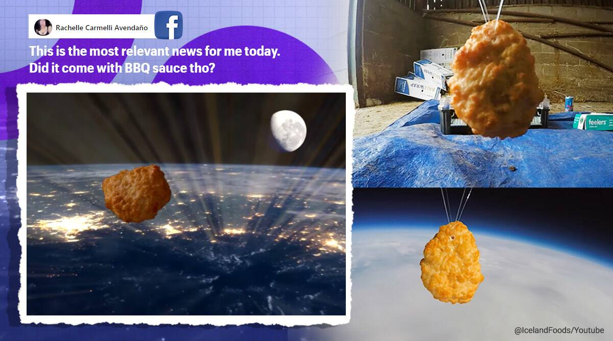 chicken nugget space, iceland food, iceland chicken nugget space, food company sends nugget in space, viral news, odd news, indian express