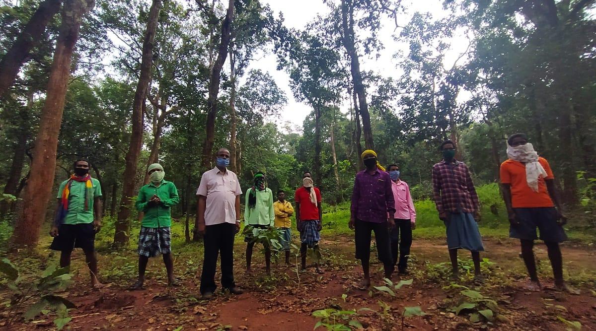Bastar, Bastar tribals, Bastar tribals tree saving, Bastar trees, Baster afforestation, India news, Indian Express