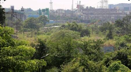 aarey car shed, aarey metro project, Aarey forest, Aarey car shed relocation, Aarey car shed new location, Aarey Milk Colony, Mumbai forest, Uddhav Thackeray, mumbai city news