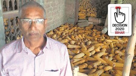 bihar elections 2020, bihar farmers, bihar agriculture, lockdown effect on bihar farmers, bihar crops, makka, bhusa, bihar elections, bihar assembly elections 2020, indian express
