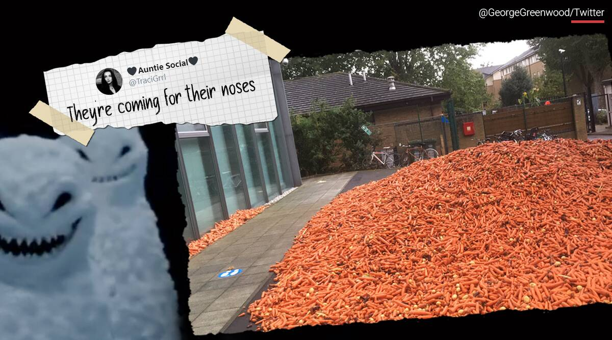 29 Tonnes Carrots london street, Goldsmiths university campus, artist, unwanted carrot, Rafael Perez Evans, trending, indian express, indian express news