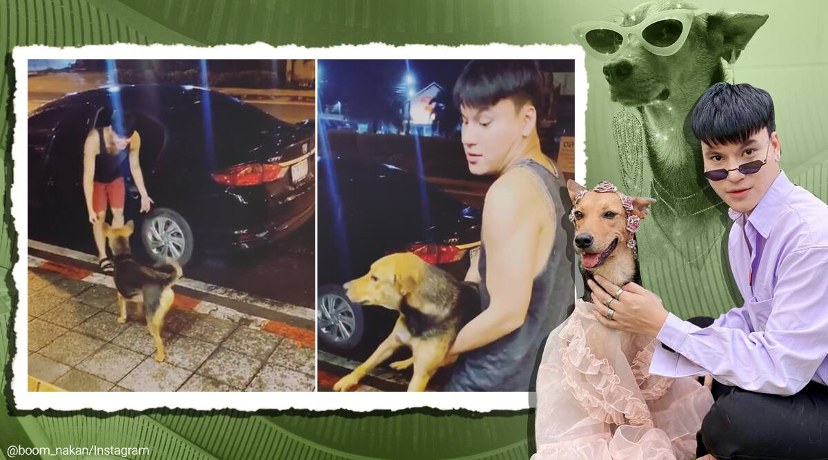 drunk thai man adopt dog he brought home, man adopts stray dog, stray dog become instagram celebrity, stray dog instagram model, good news, indian express,