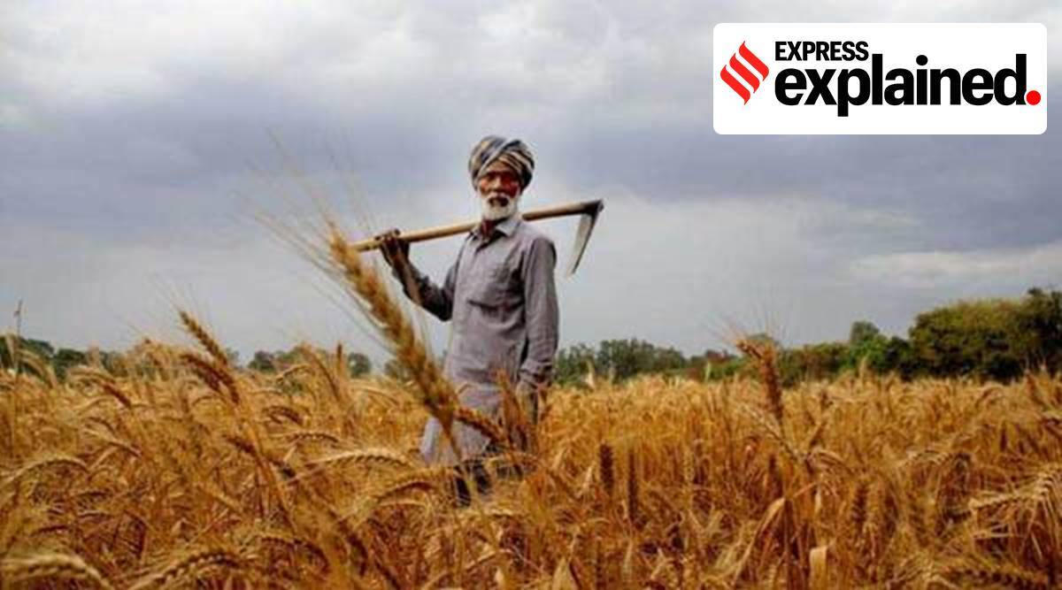 Why it's an underestimate to say only 6% farmers benefit from MSP