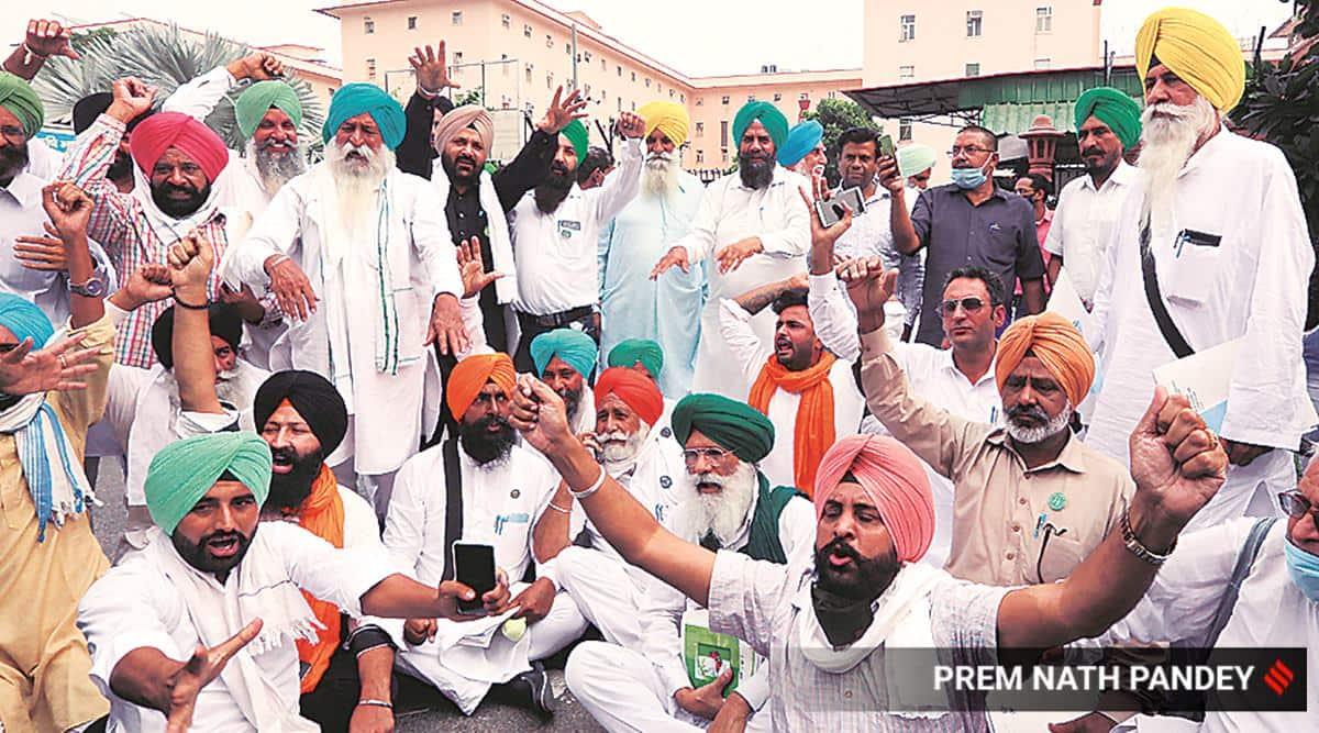 farm bills, farm laws, farmer protests, farmer protests Punjab, Punjab farmer protests, farmer protests survey, India news, Indian Express