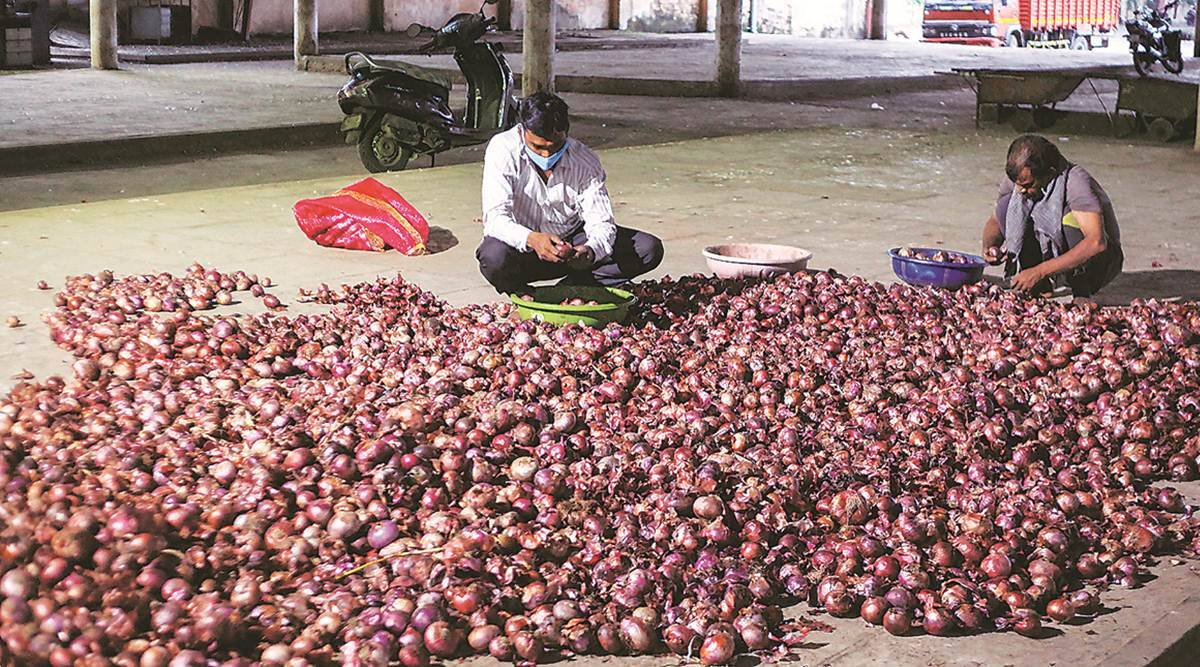 Markets remain close, traders go to farmers' fields in Nashik