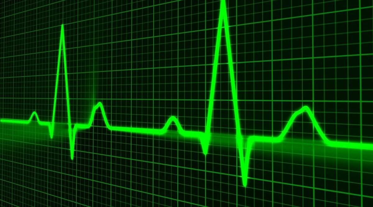 stress and heart health, stress and heartbeats, abnormal heartbeats, heart conditions, heart health, chronic stress, indian express news