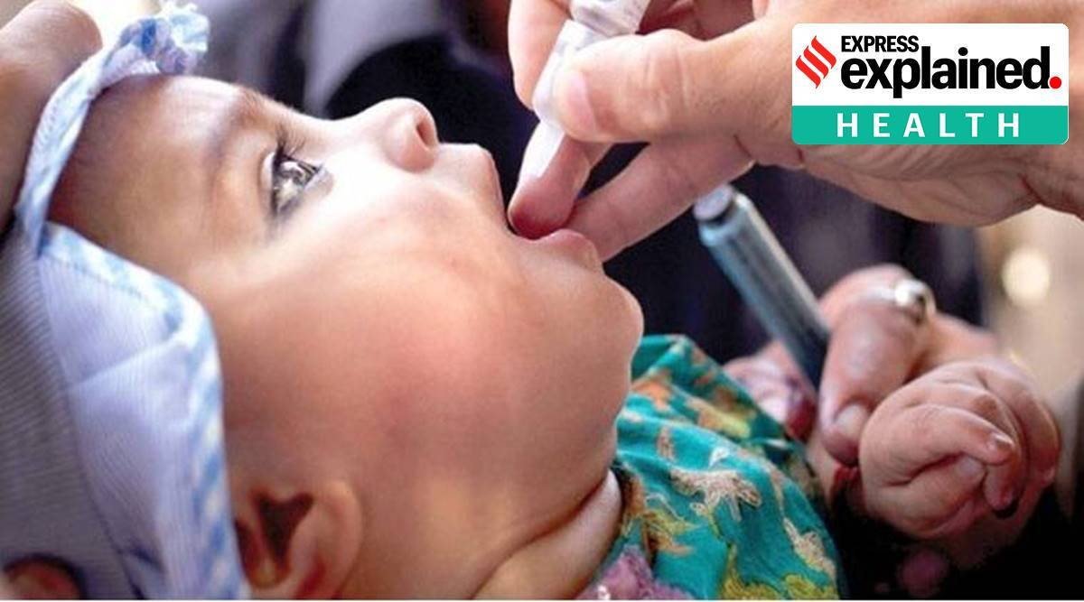 World Polio Day, why is World Polio Day observed, India polio free when, polio in Pakistan, what causes polio, polio vaccine, express explained, indian express