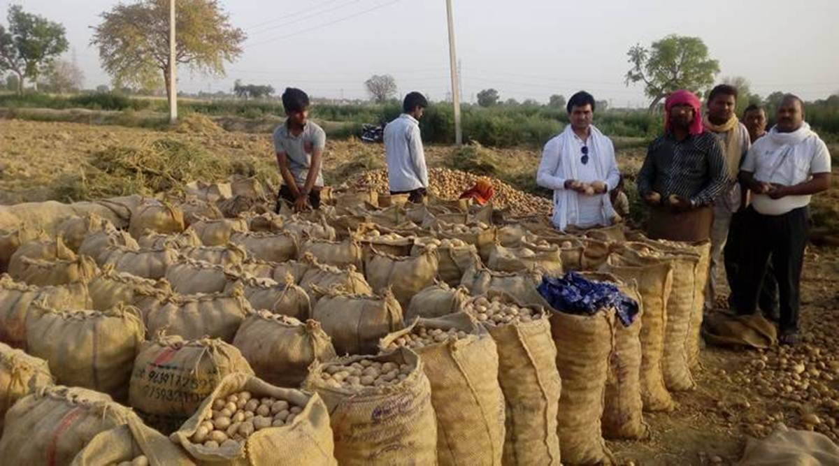 In attempt to control potato prices, government cracks whip on hoarding