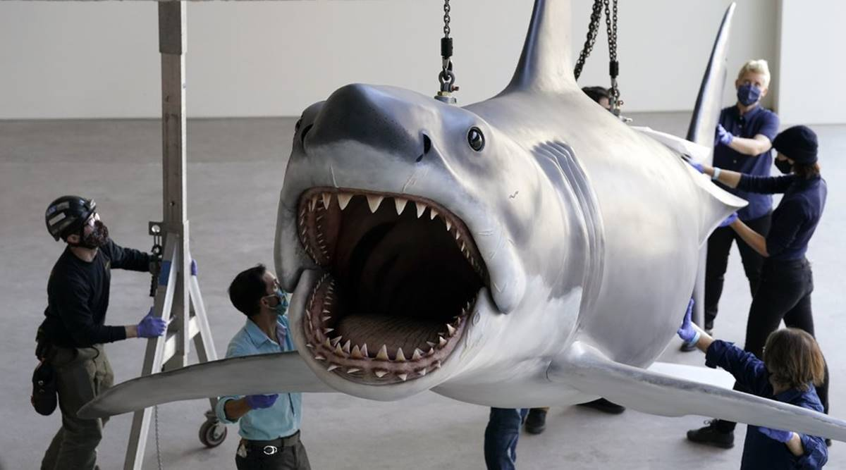 Bruce, the shark featured in Steven Spielberg's classic film Jaws
