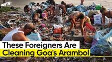 Group of Foreigners Are Cleaning Goa's Arambol