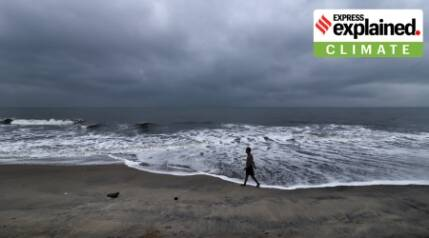 Why has the Northeast monsoon remained subdued this year?