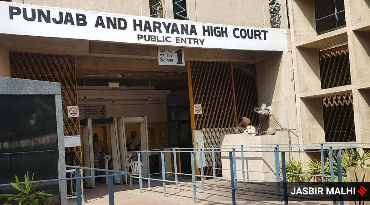 Punjab and Haryana High Court, farmers protest, internet ban, punjab internet ban, haryana internet ban, union governmet, haryana government, Article 19 (1) (a), Article 19 (1) (g), chandigarh news, indian express