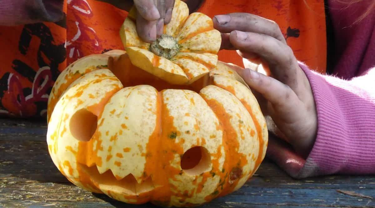 Halloween, child, child cancer Halloween, cancer, cancer deaths, children with cancer, heartwarming, good news