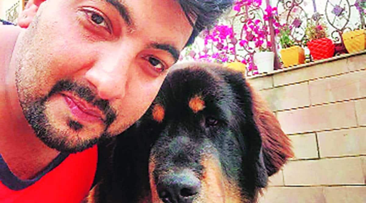 CHandigarh Pet dog missing, dog owner announces reward, CHandigarh news, Punjab news, Indian express news