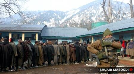 J&K: Over 43% polling till 1 pm in 3rd phase of DDC elections