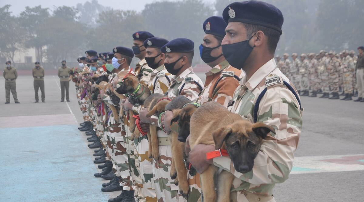 Galwan, Daulat, Rezang: Why ITBP named its dog squad members after Ladakh  standoff points   India News,The Indian Express