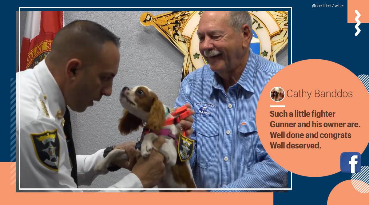 Dog, Deputy Dogs, honorary Deputy Dogs, Florida, Florida sheriff's office, Dog rescue video, Pets on Patrol program, Dog rescued from alligator, Lee County Sheriff's Office, rescued dog honorary deputy, trending news, Indian Express news