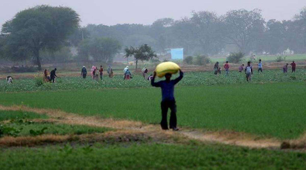 Andhra Pradesh: Biggest land ownership survey to kick off soon