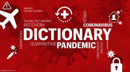 pandemic, pandemic dictionary, words that defined 2020, 2020's most prominent words, pandemic year, new pandemic dictionary, pandemic glossary, indian express news
