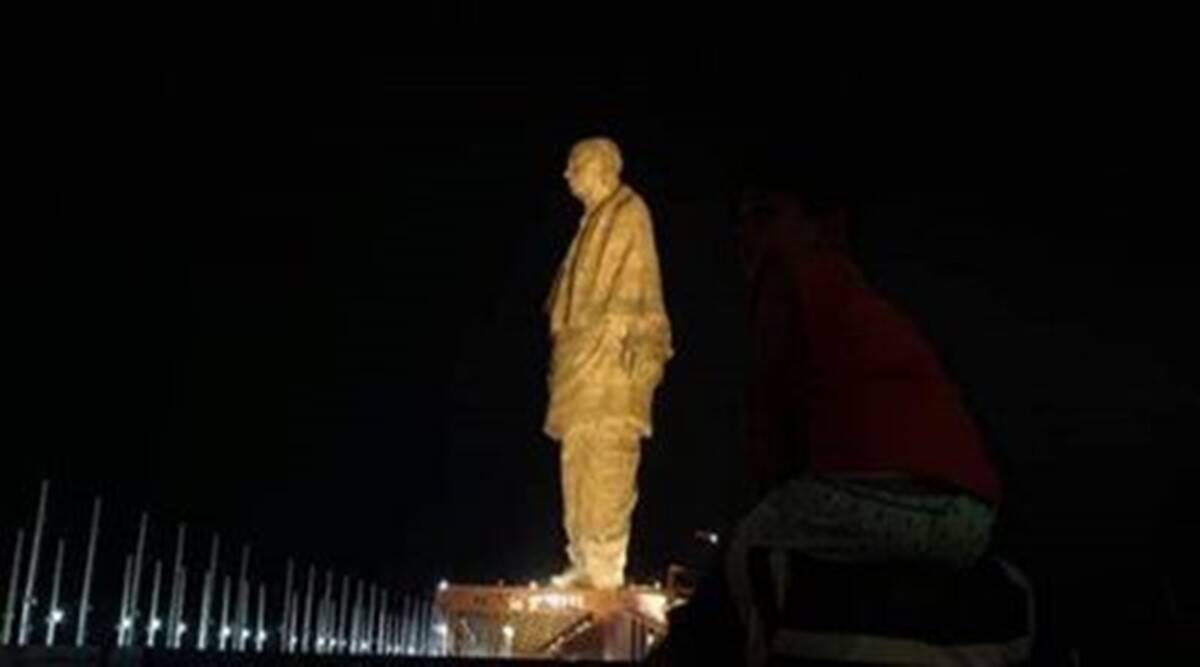 Gujarat: 194 crocodiles relocated from lake near Statue of Unity for safety of tourists