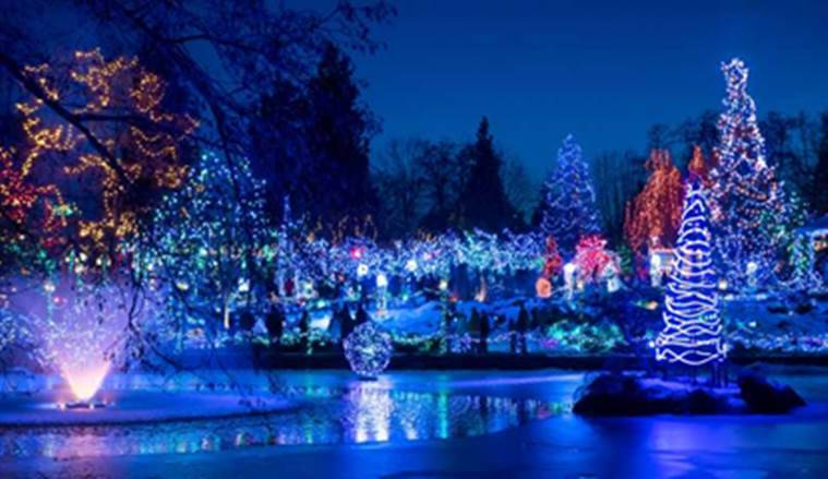 light shows, fireworks, holiday season, Christmas celebrations, New Year celebrations, countries with the best light shows, Berlin, Hong Kong, Sydney, Vancouver, indian express news