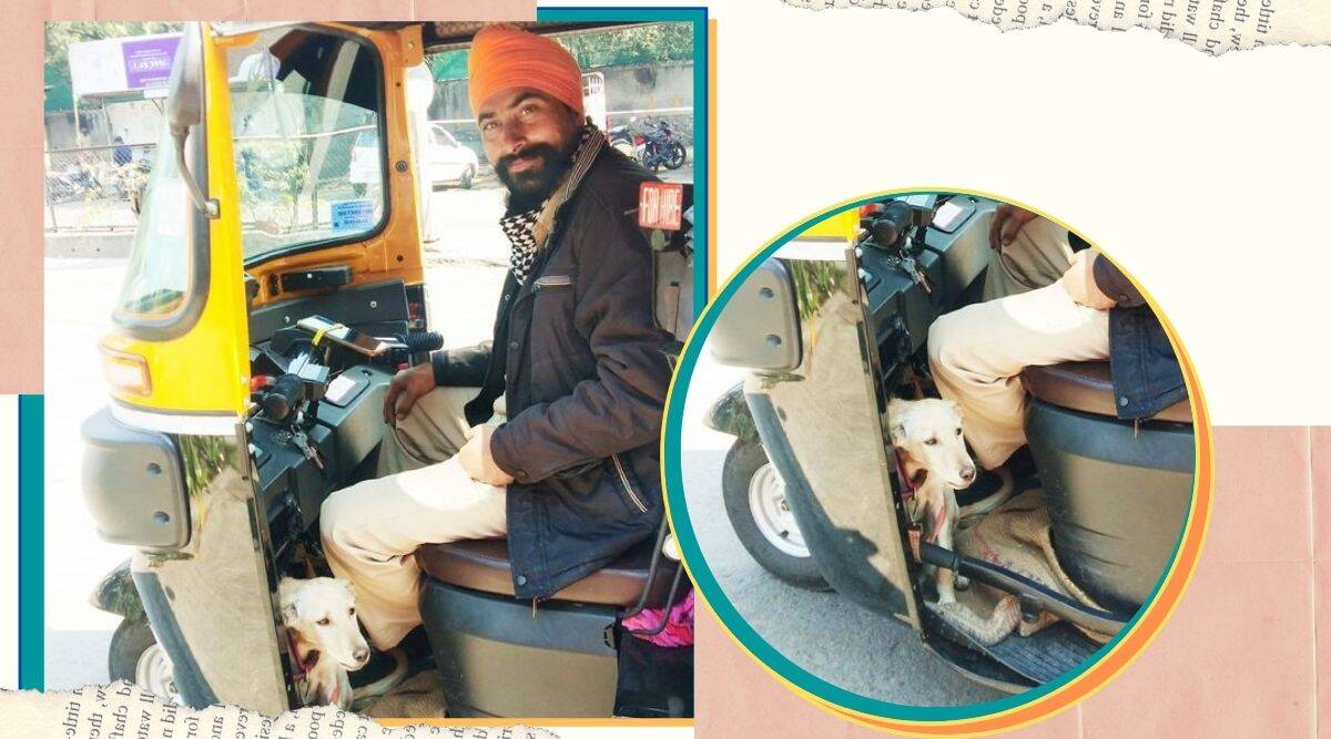 Pune, pune auto rickshaw driver viral post, pune autorickshaw driver dog viral, abandoned dogs, dogs, trending news, indian express news