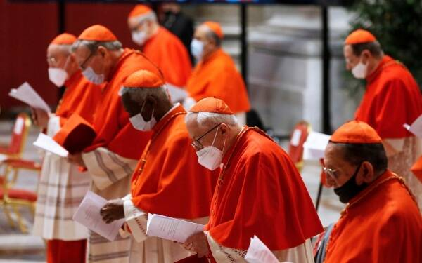 pope francis, pope francis cardinals, new cardinals, 13 cardinals created, who is a cardinal, indian express