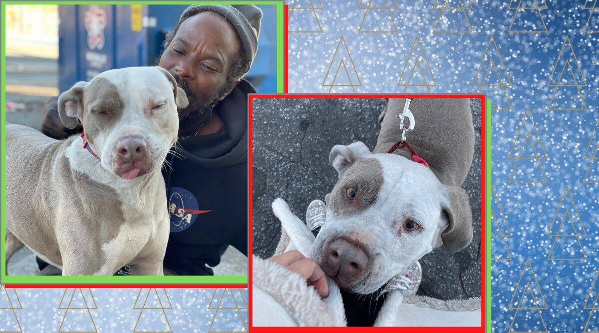 W-Underdogs, homeless man rescues dogs from burning building, burning bulding, dog rescue, dog rescue trending, good news,