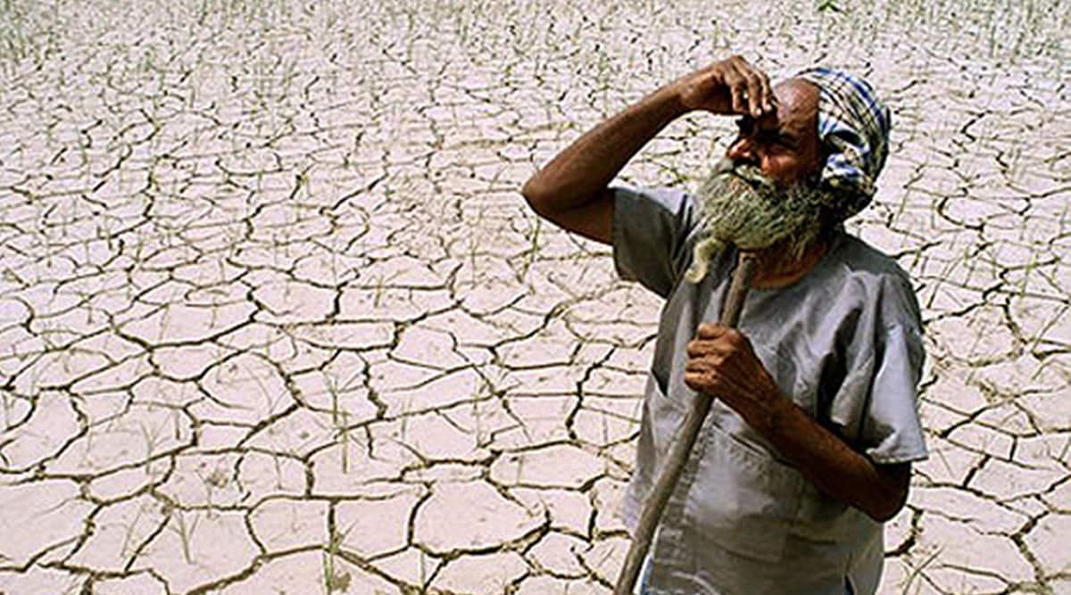maharashtra, maharashtra drought, maharashtra increase in draught, maharashtra drought in 50 years, maharashtra news, indian express news