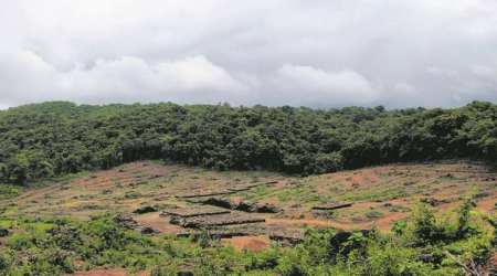 In Goa, youngsters hold press meet, ask govt to scrap 3 linear projects crossing Western Ghats